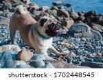 Portrait Of A Charming Pug...