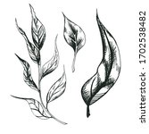 set of vector decorative leaves ... | Shutterstock .eps vector #1702538482