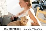 the cat is lying on the table... | Shutterstock . vector #1702741072