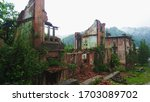Ruins Of A Building Overgrown...