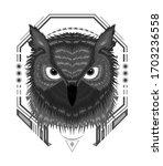 Portrait Of An Owl. Owls Head....