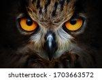 Fractals Background Owl...