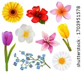 Vector Flower Icons Set 3...