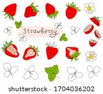 fresh strawberries isolated on... | Shutterstock .eps vector #1704036202