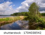 landscape of the lake and...   Shutterstock . vector #1704038542