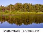 river  trees. pripyat river in...   Shutterstock . vector #1704038545