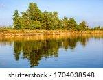 river  trees. pripyat river in...   Shutterstock . vector #1704038548