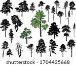 illustration with trees set... | Shutterstock .eps vector #1704425668