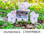 Baby Shoes With Pink Teddy Bear ...