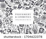 hand drawn perfumery and... | Shutterstock .eps vector #1704622378