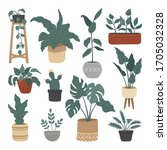 set of hand drawn house plant ... | Shutterstock .eps vector #1705032328