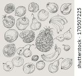 vector illustration of tropical ... | Shutterstock .eps vector #170507225
