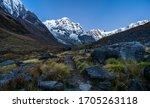 Annapurna South Peak And Alpin...