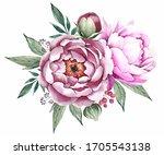 Peonies Flowers. Watercolor...