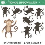 Tropical Shadow Matching...