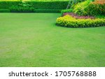 Garden With Fresh Green Grass...