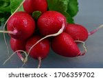 Bunch Of Organic Red Radishes...