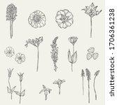 set of hand drawn vintage... | Shutterstock .eps vector #1706361238