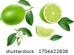 lime  half a lime and a slice ...   Shutterstock .eps vector #1706622838