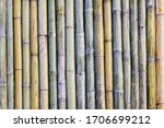 Soft Focus Bamboo Fence...