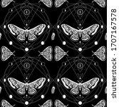 night moth  butterfly pupa....   Shutterstock . vector #1707167578