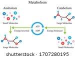 illustration of chemical. the... | Shutterstock .eps vector #1707280195