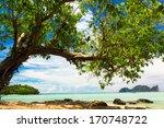 Exotic Paradise Under Trees