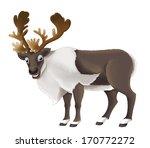 cartoon animal   illustration... | Shutterstock . vector #170772272