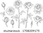 big set of rose flowers  buds ... | Shutterstock .eps vector #1708209175