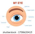 poster for children learning.... | Shutterstock .eps vector #1708620415