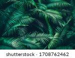 Adventure Nature Background Of...