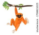 gibbon primate mammal. monkey... | Shutterstock .eps vector #1708821025