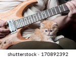 Stock photo red kitten asleep in the arms of men playing the guitar 170892392