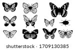 butterflies carve set  vector... | Shutterstock .eps vector #1709130385