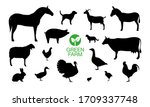farm animals icon set with... | Shutterstock .eps vector #1709337748