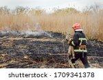 Firefighters Battle A Wildfire. ...