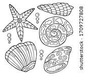 Hand Drawn Sea Shell Isolated...