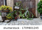 Old And Decorative Bicycle...