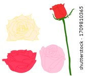 4 roses  the yellow petals rose ... | Shutterstock .eps vector #1709810365