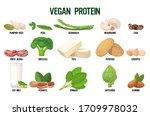 set vegan sources of protein... | Shutterstock .eps vector #1709978032