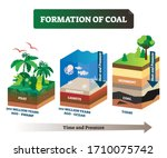 Formation Of Coal Vector...