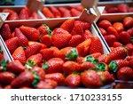 Organic Fresh Strawberries In...