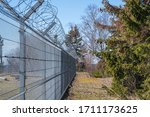 Fenced Area. Covered With...