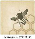 bee old background   vector... | Shutterstock .eps vector #171127145