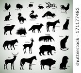 Set Of Animal Silhouettes On...