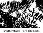 silhouette black of tree... | Shutterstock . vector #1711821838