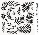 floral element silhouette... | Shutterstock .eps vector #1711836442