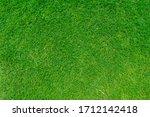 Green Grass Texture Background  ...