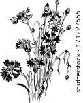 vintage floral composition  ink ... | Shutterstock .eps vector #171227555
