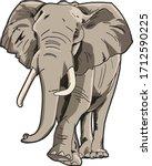 African Elephant Vector Art...